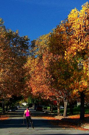 Skater on autumn street