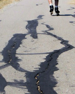 Photo of patched crack in asphalt on trail