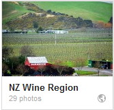 NZ wine country